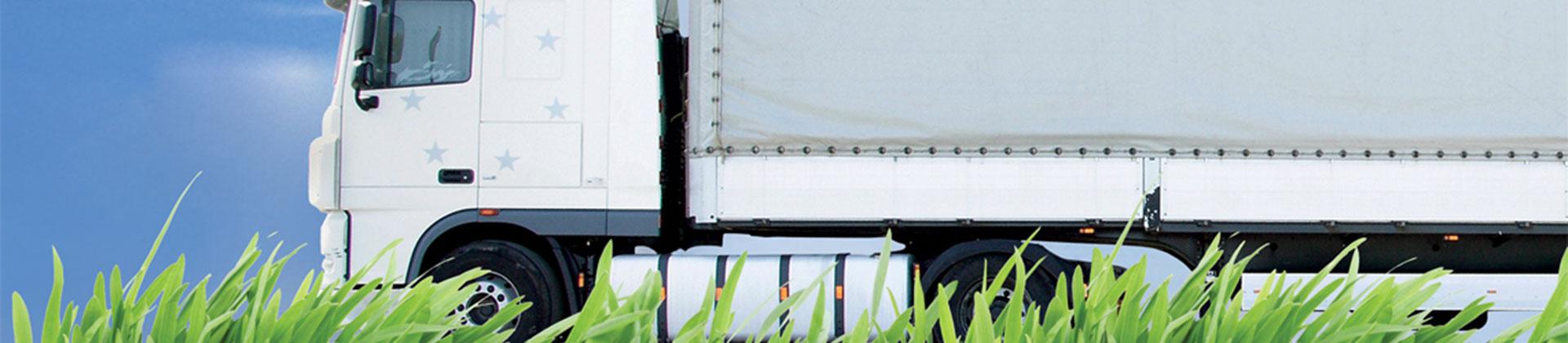 White_truck_grass_04